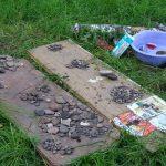 Как я съездил на археологические раскопки