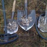 Хотите найти клад – перебирайтесь в Краснодар