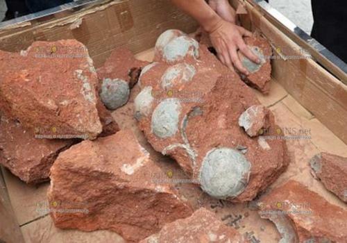 На Пасху Китаец нашел клад из 5 яиц, правда не пасхальных