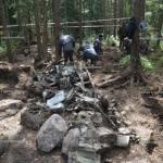 Поисковики под Питером нашли бомбардировщик, который был сбит в годы ВОВ