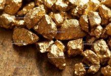 Россиянин нашел клад - золотые слитки, а теперь сядет в тюрьму