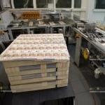 В наличном обороте Еврозоны скоро появятся болгарские евро банкноты