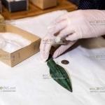 В Норвегии археологи-любители обнаружили целый склад оружия