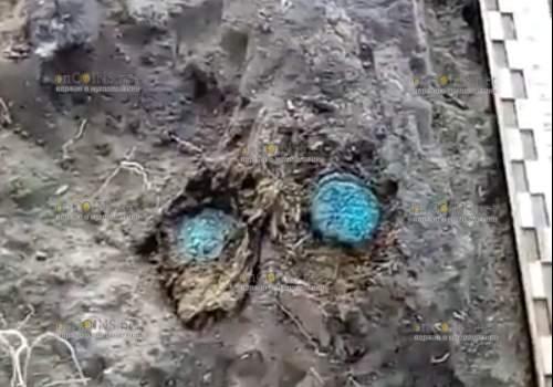 На раскопках в Увеке в пригороде Саратова нашли медные монеты XIV века
