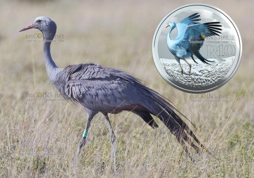 ЮАР монета 10 рандов Африканская красавка