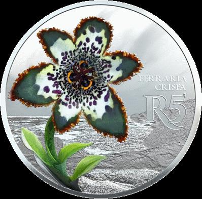 ЮАР монета 5 рандов Феррария, реверс