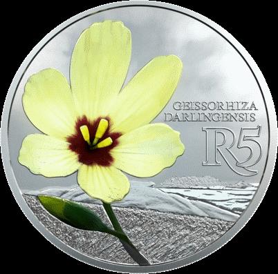 ЮАР монета 5 рандов Гейссориза лучевая, реверс