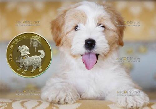 Китай монета 10 юаней Год собаки