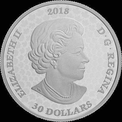 Канада 3-D монета 30 долларов Королевские ворота, аверс