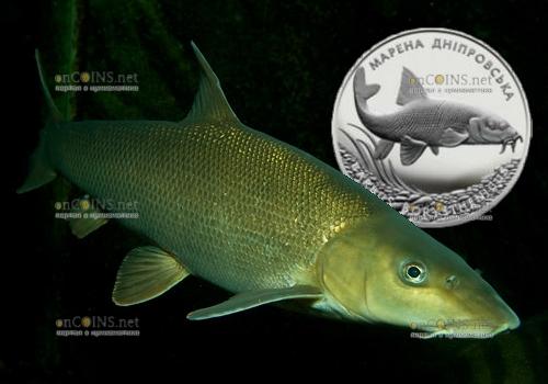 Украина монета 10 гривен Марена днепровская