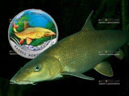 Украина монета 2 гривны Марена днепровская