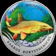 Украина монета 2 гривны Марена днепровская, реверс