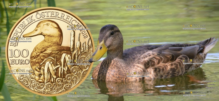 Австрия монета 100 евро Кряква
