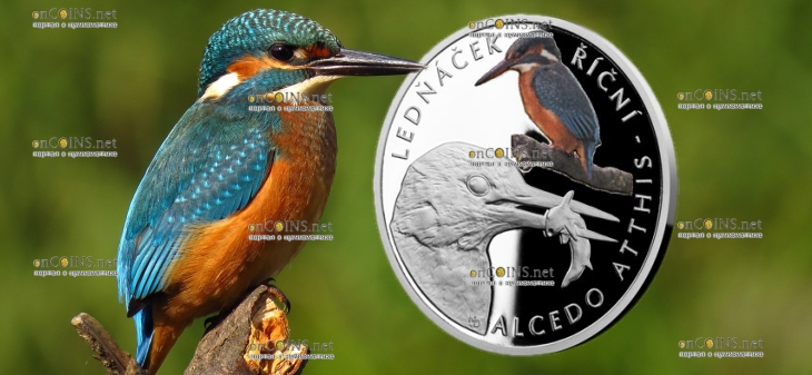 Ниуэ выпустило монету 1 доллар Зимородок