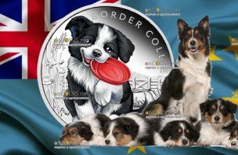 Тувалу монета 50 центов Бордер-колли