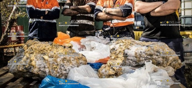 В Западной Австралии нашли сотни килограмм золота