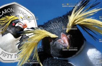Фолклендские острова монета 50 пенсов Хохлатый пингвин