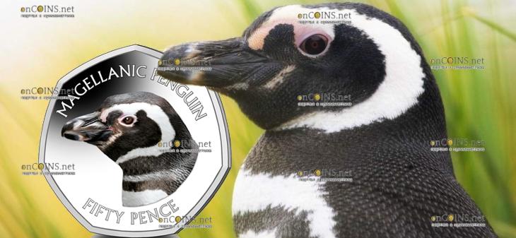 Фолклендские острова монета 50 пенсов Магелланов пингвин