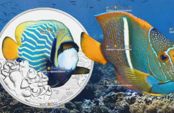 Ниуэ монета 2 доллара Императорская рыба-ангел, реверс