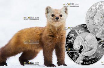 Казахстан монеты 100 тенге и 200 тенге Соболь