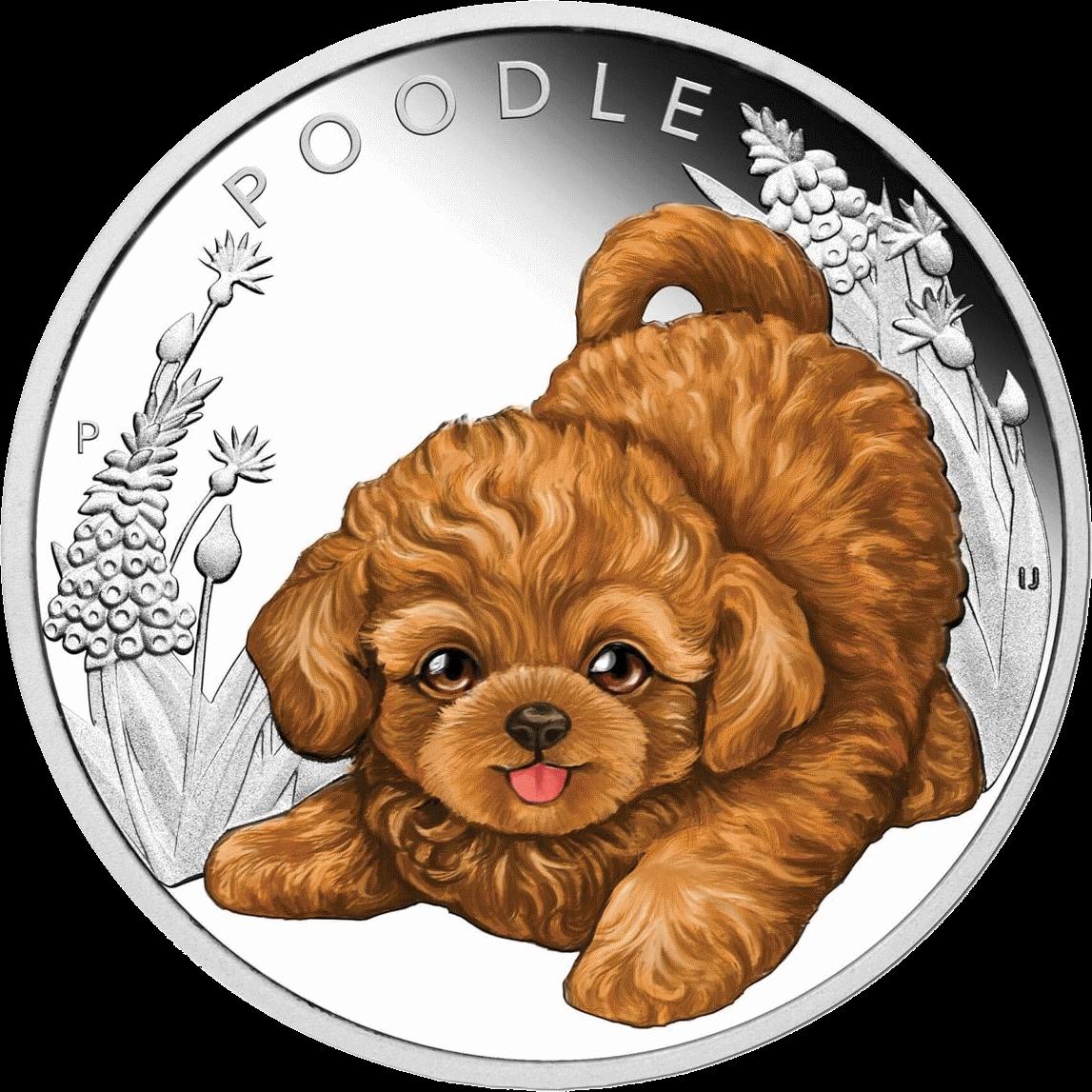 Тувалу монета 50 центов Пудель, реверс