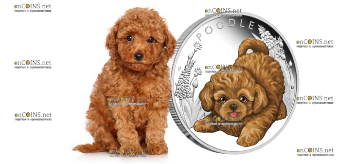 Тувалу монета 50 центов Пудель