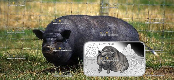 Тувалу прямоугольная монета 1 доллар Большая Черная свинья