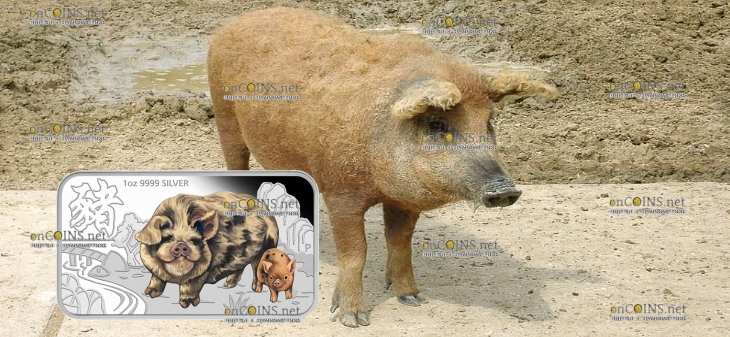 Тувалу прямоугольная монета 1 доллар Волосатая свинья, реверс