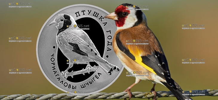 Беларусь монета 1 рубль Черноголовый щегол
