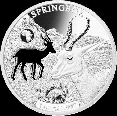 Джибути монета 250 франков Спрингбок, реверс