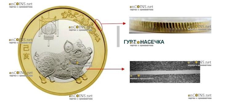 Китай монета 10 юаней Год Свиньи 2019, защитные элементы, реверс