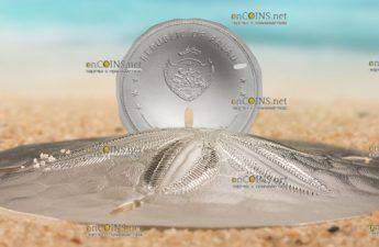 Палау монета 1 Песчаный доллар