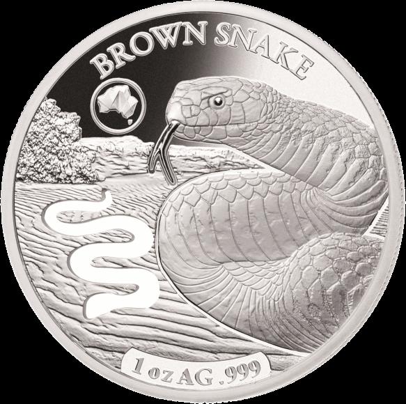 Соломоновы острова монета 5 долларов Коричневая змея реверс