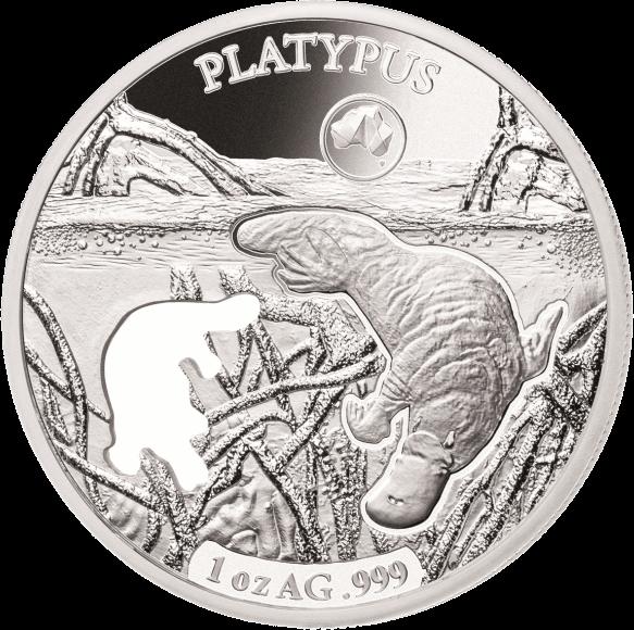Соломоновы острова монета 5 долларов Утконос, реверс