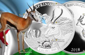 Джибути монета 250 франков Спрингбок