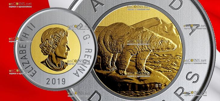 Канада циркуляционная монета 2 доллара Белый медведь 2019 года
