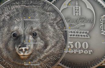 Монголия монета 500 тугриков Гобийский бурый медведь