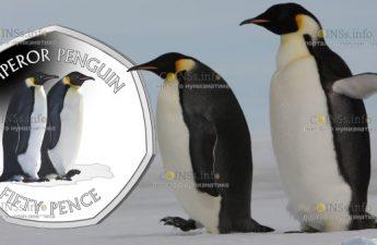 Британской антарктической территории монета 50 пенсов Императорский пингвин