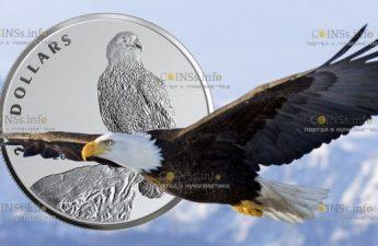 Канада монета 20 долларов Белоголовый орлан