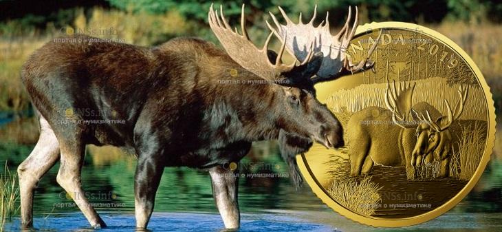Канада монета 200 долларов Лось
