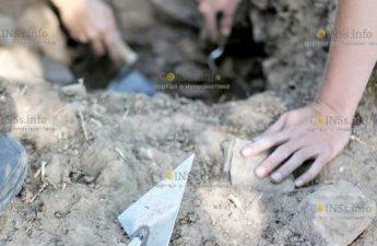 В Псковской области археологи нашли более 300 артефактов эпохи викингов