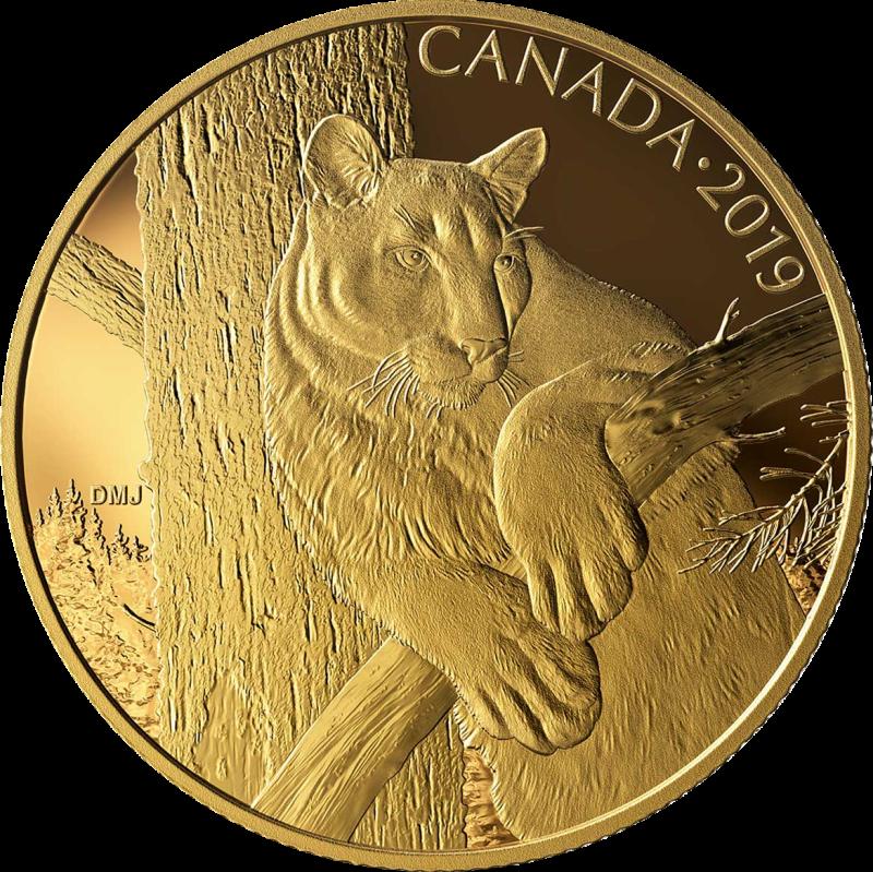 Канада монета 350 долларов Пума, реверс