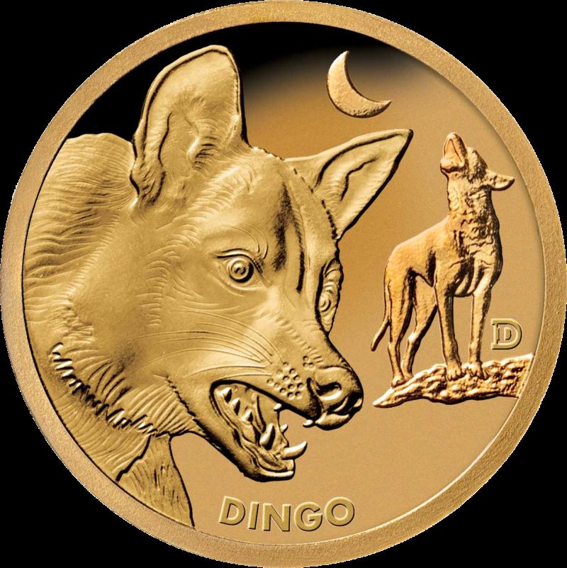 Соломоновы острова монета 1 доллар Собака Динго, реверс