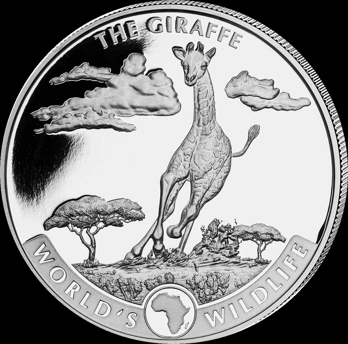 Конго монета 20 франков Жираф, реверс