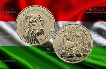Венгрия монета 2 000 форинтов Венгерская лягавая