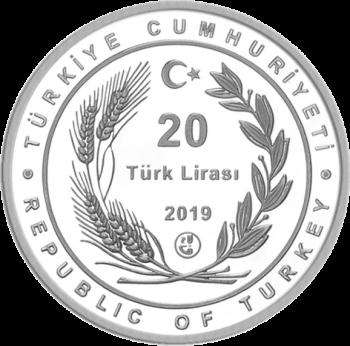 Турция монета 20 лир 2019 год, аверс