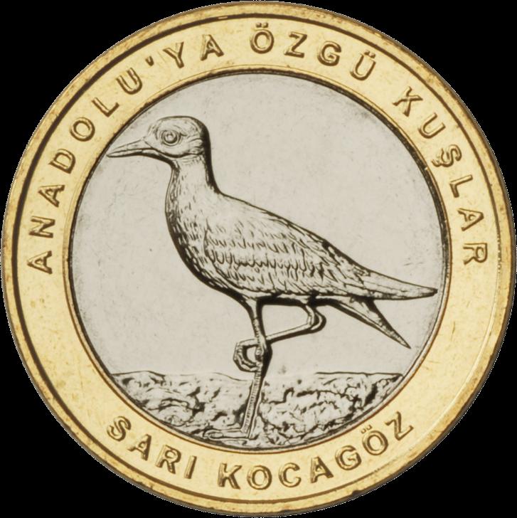 Турция монета 1 лира Авдотка, реверс