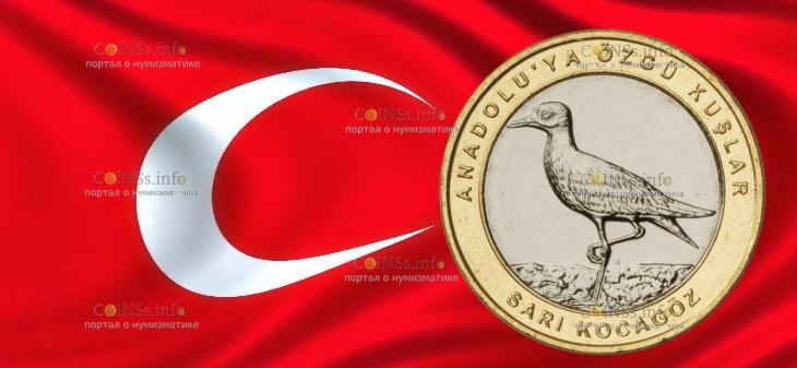Турция монета 1 лира Авдотка