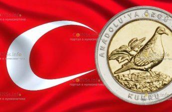 Турция монета 1 лира Горлица