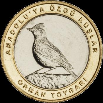 Турция монета 1 лира Лесной жаворонок, реверс